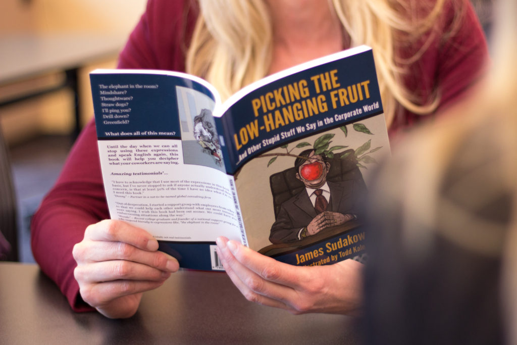 Picking the Low Hanging Fruit Book Cover